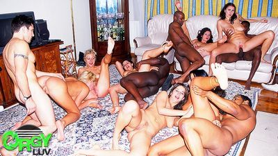 Orgy Luv download